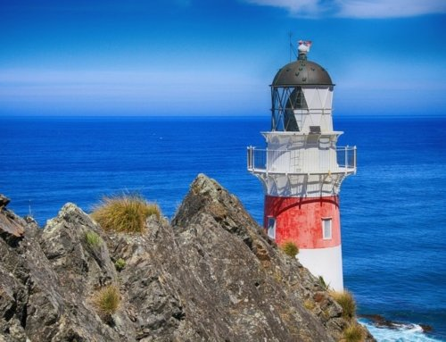 Vacanza in Nuova Zelanda: cosa sapere