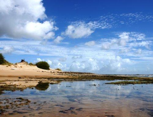 Vacanza in Mozambico: cosa sapere