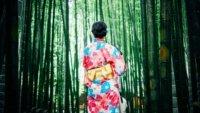 Storia del kimono filo nicky