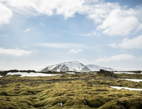 Pillole ambientali dall'Islanda