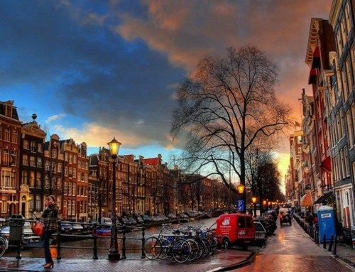 """Cosa fare in 48 ore ad Amsterdam La """"Venezia del nord"""" e i suoi tulipani"""