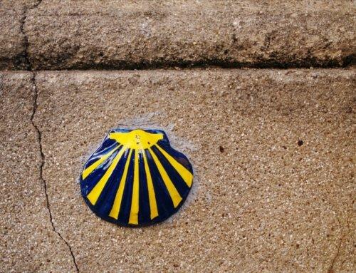 Il cammino di Santiago laico Da Porto a Santiago per metter a fuoco obbiettivi, desideri e ritrovare l'equilibrio