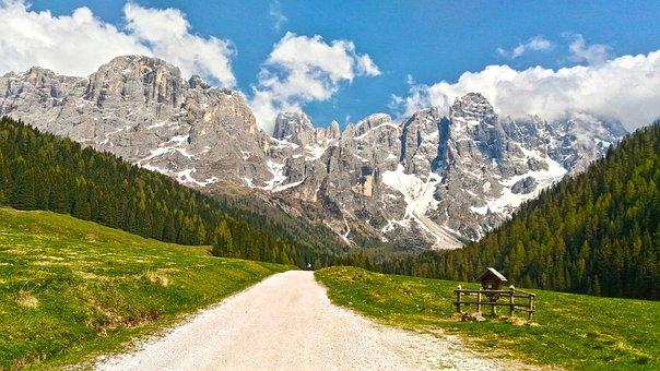 I boschi della Val di Fiemme Una storia d'amore che sa ti casa, di resina, di muschio e di vita